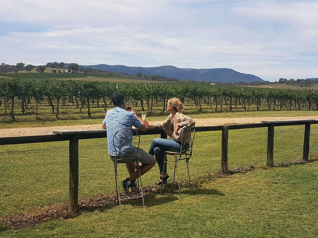 De Beaurepaire Wines cellar door views