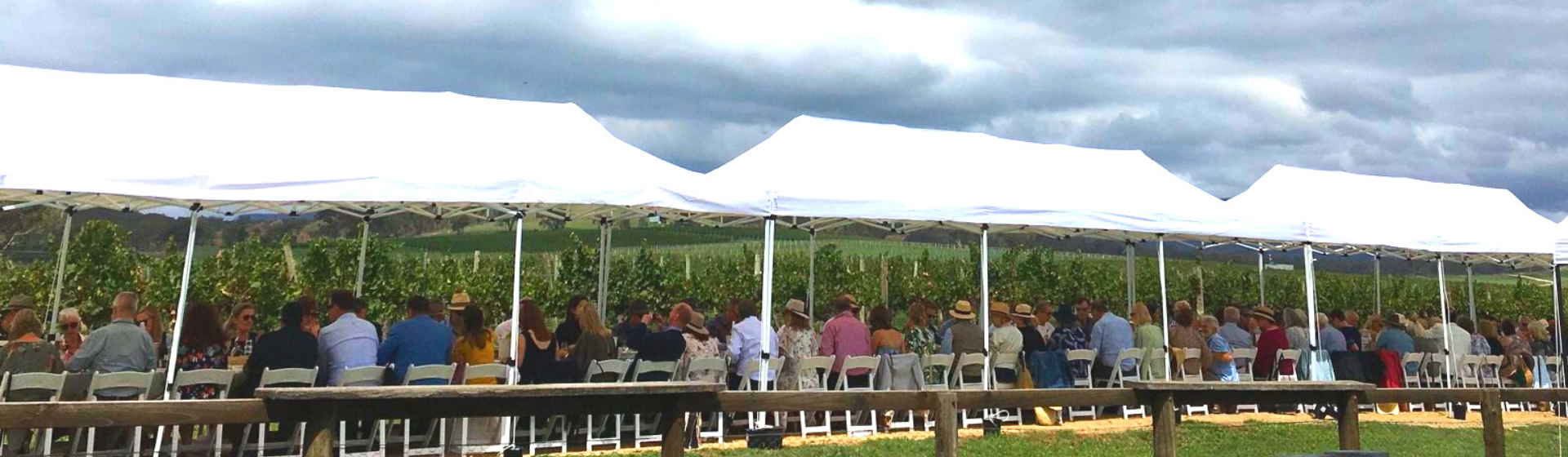 De Beaurepaire Wines Long Lunch in the Vines